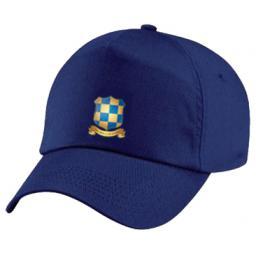 wcgs-cap300.jpg