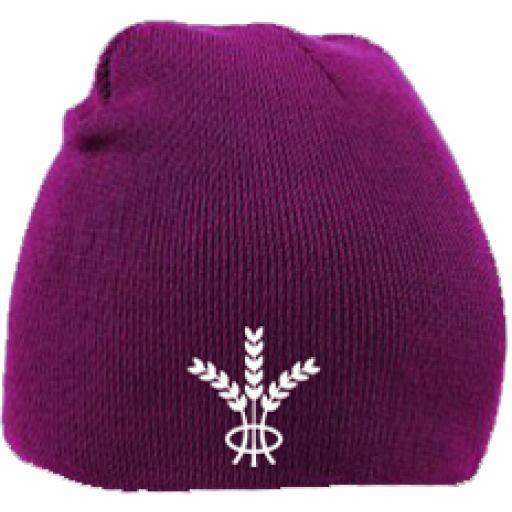 Ruislip RFC Beanie Hat