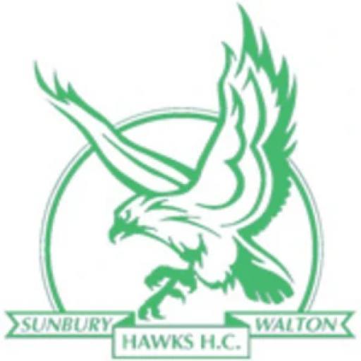Sunbury & Walton HC Seniors