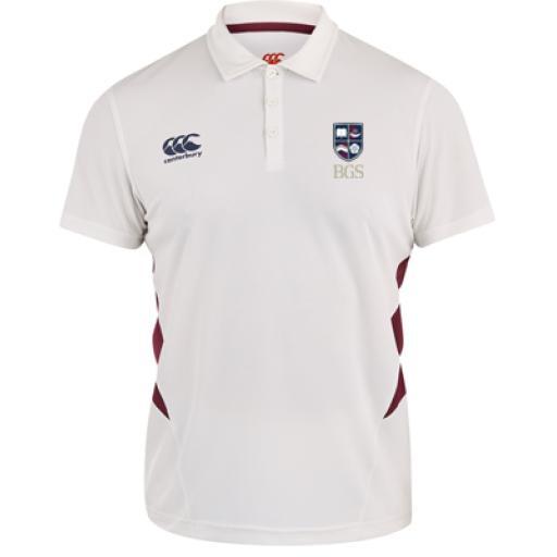 bgs-cric-shirt400.jpg