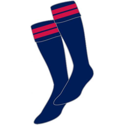 BS-sock_300px.jpg